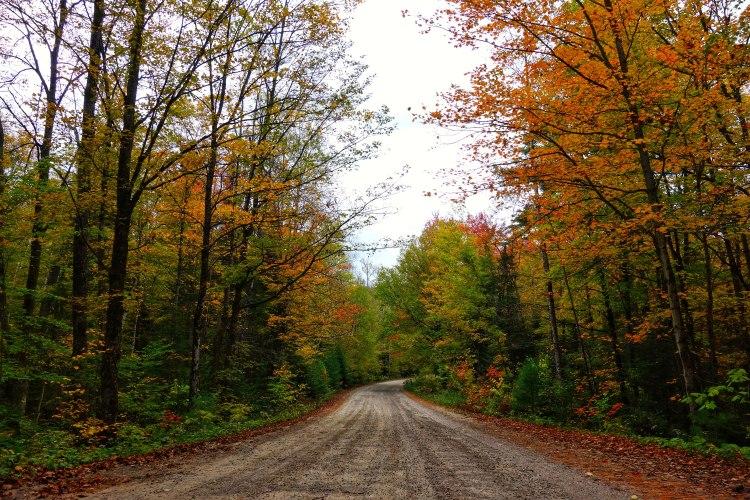 Bon-Echo-Provincial-Park-PVT-Whereiscoralie