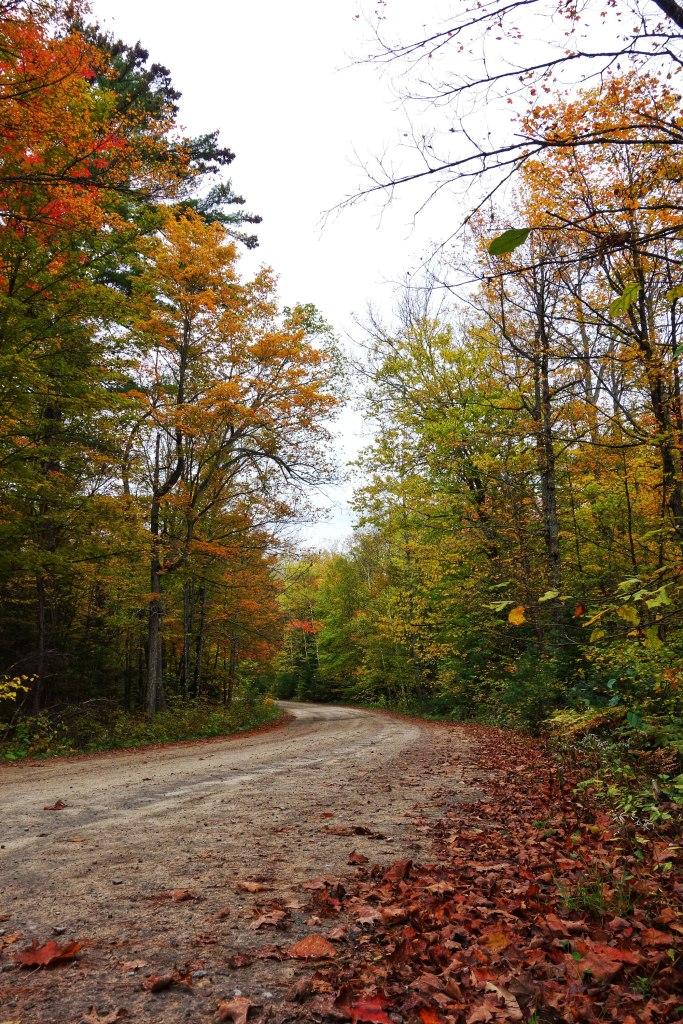 Bon-Echo-Provincial-Park