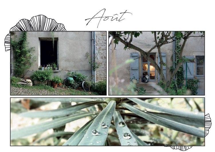 Aout-2017-Whereiscoralie
