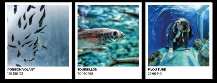 Canada Toronto Aquarium