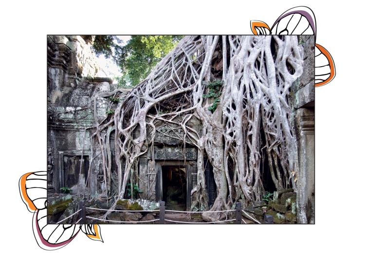 Angkor Tomb Raider