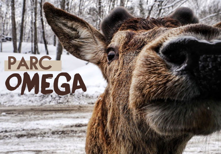 Parc-Omega