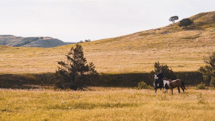 Badlands-National-Park-horse-whereiscoralie