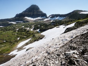 Glacier National Park Hidden Lake Trail (12)