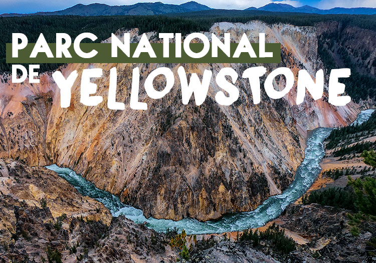 Parc-National-Yellowstone