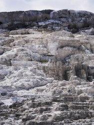 Mammoth Hot Springs Yellowstone (10)