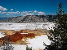 Mammoth Hot Springs Yellowstone (13)