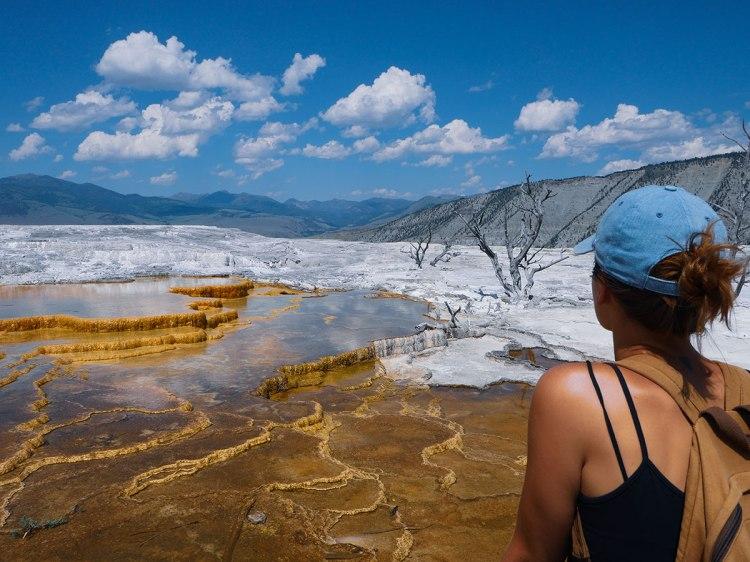 Mammoth Hot Springs Yellowstone (14)