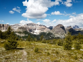 healy pass trail banff national park (16)