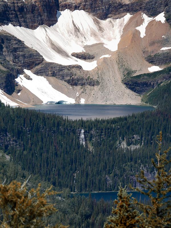 healy pass trail banff national park (22)