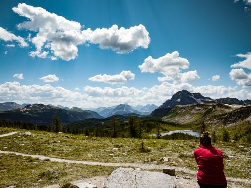 healy pass trail banff national park (23)