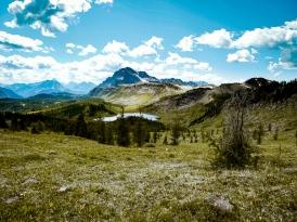 healy pass trail banff national park (25)
