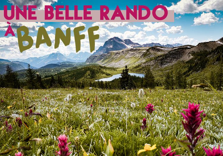 randonnée banff national park healy pass