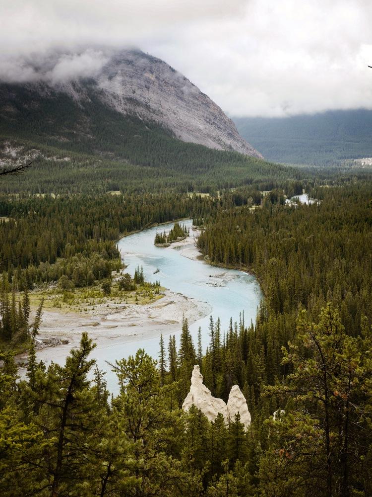 Hoodoos Viewpoint Banff National Park