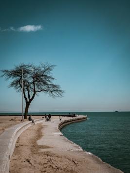 Chicago 48h Loop (213)